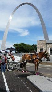 Gateway Arch St. Louis Missouri USA