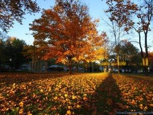 Fall Colors in Wamego Kansas