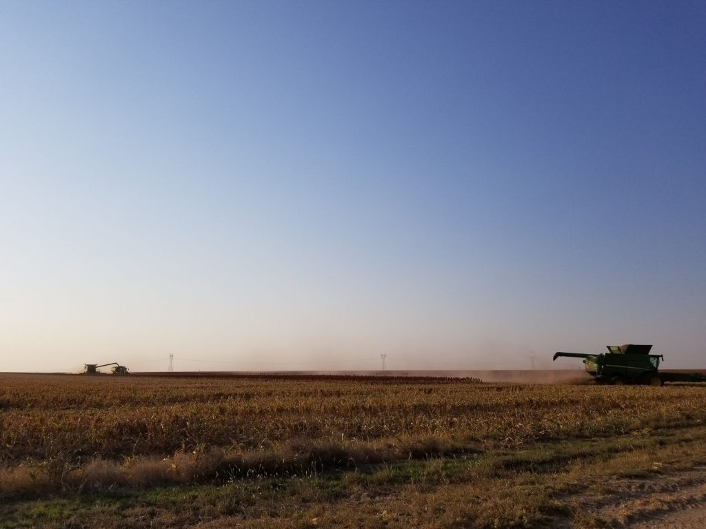 Fall Harvest Kansas USA